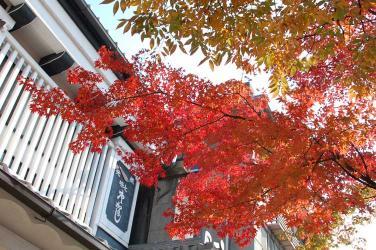 長野市内の紅葉