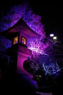 #016 青い灯篭