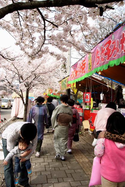 #005 桜と着物
