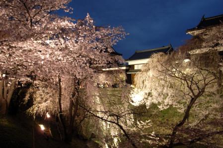 #002 桜と上田城