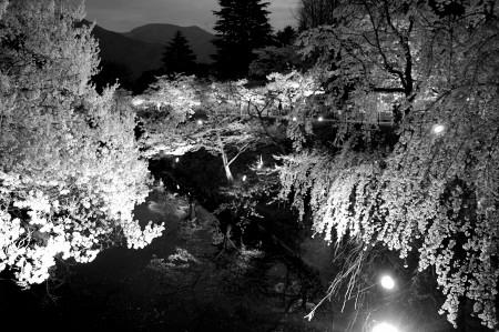 #002 白と黒