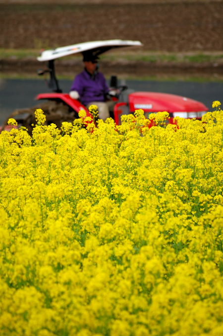 #002 農作業