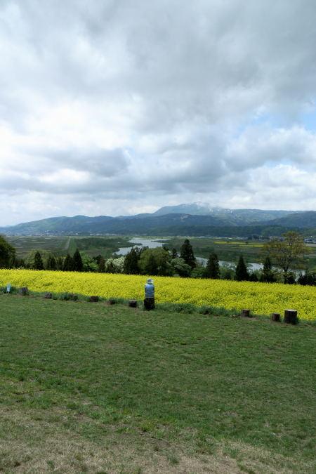 #002 空と菜の花畑と人