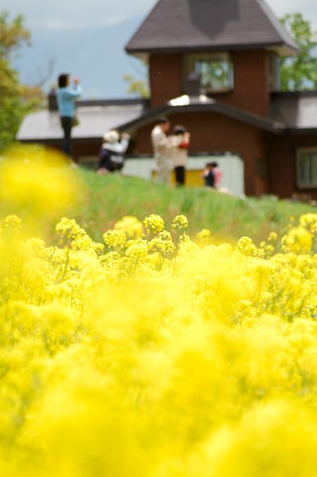 #001 人々と花畑