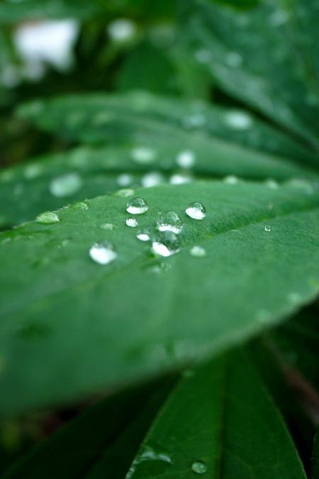 #006 雨のち晴れ