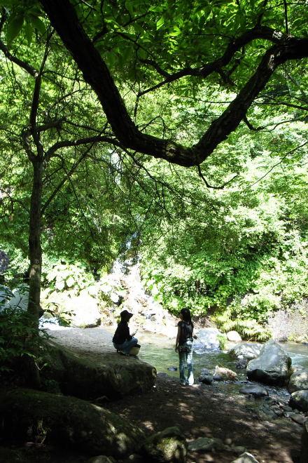 #002 吐竜の滝