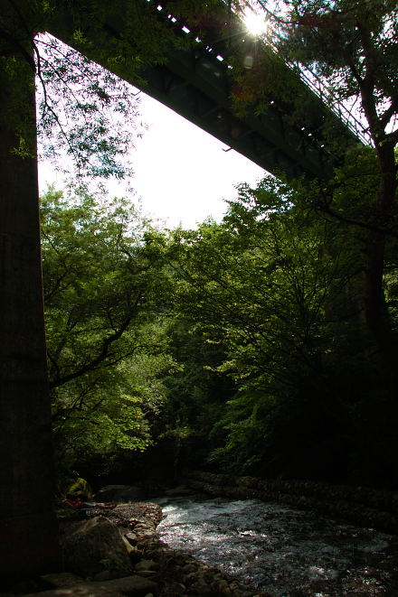 #005 自然の中で一休み