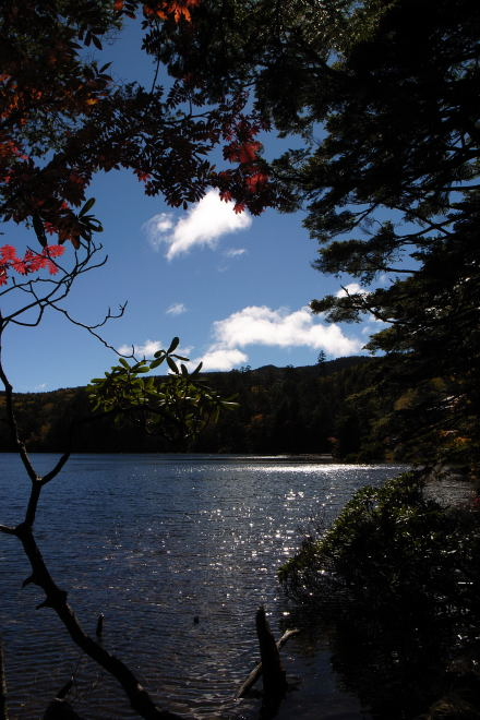 #003 白駒池の紅葉