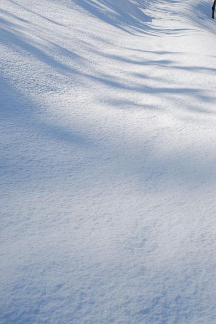 #001 雪