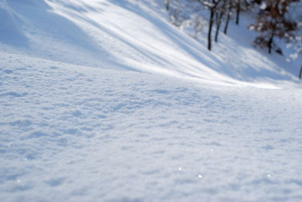 #002 雪