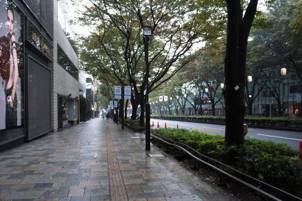 #005 雨の表参道