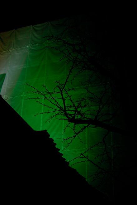 #006 Green