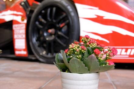 #001 花とレーシングカー