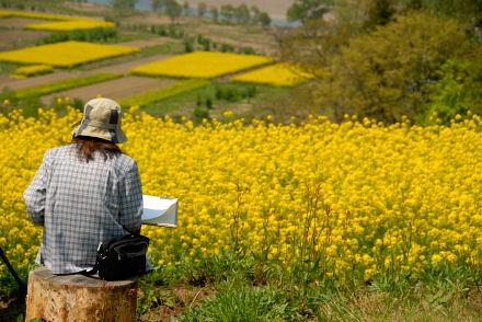 #001 菜の花を描く人