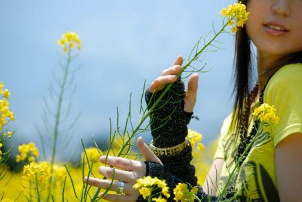 #001 菜の花・娘