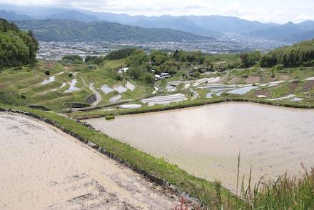 #002 稲倉の棚田