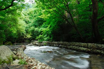 #002 吐竜の滝 2007