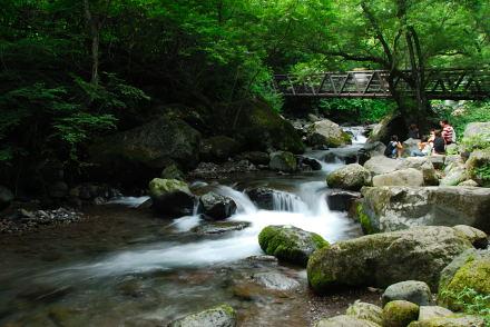 #003 吐竜の滝 2007