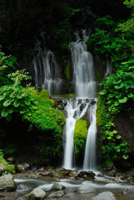 #004 吐竜の滝 2007