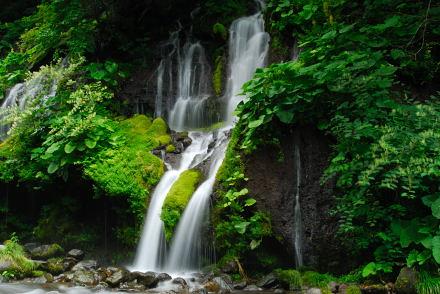 #005 吐竜の滝 2007