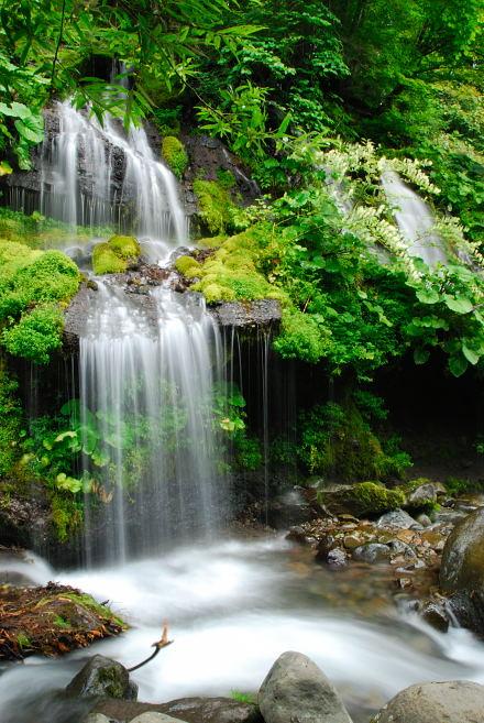 #006 吐竜の滝 2007
