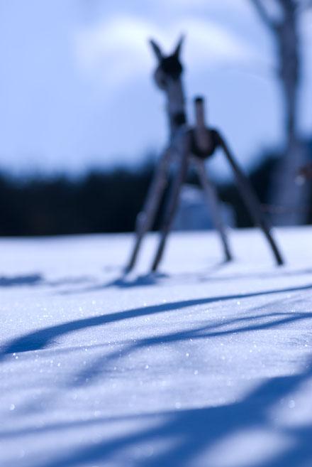 #006 雪の中で