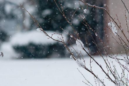 #002 大雪