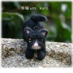 satineko-kuro-1.jpg