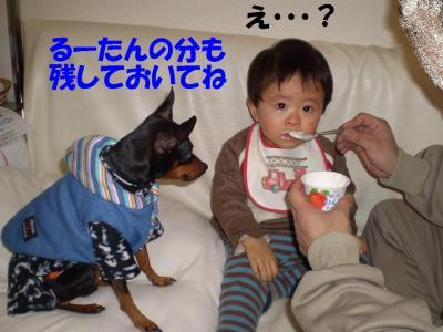 PC270045.jpg