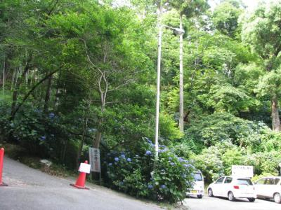 18番札所の坂道