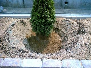 掘り出した土戻し