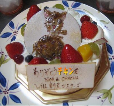特製ケーキ