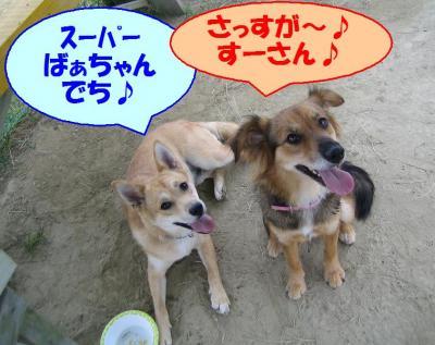 目指せ!!スーパーセクシーばぁちゃん!!!