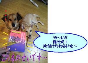 負け犬NO.1!!!