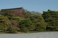 kyoto 249