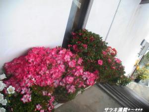 PIC_1560.jpg