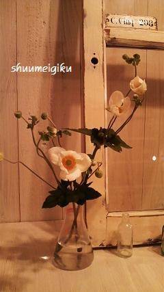 shuumeikkiku9