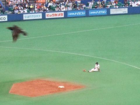 20080517_nishioka.jpg