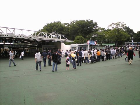 20080628_nekoyashiki.jpg
