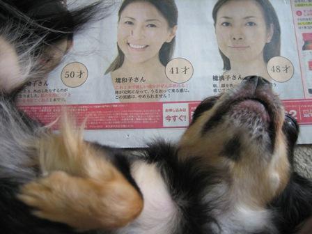 IMG_0472a新聞