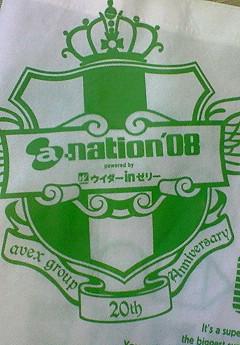 a-nation '08