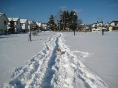 20127画像 594