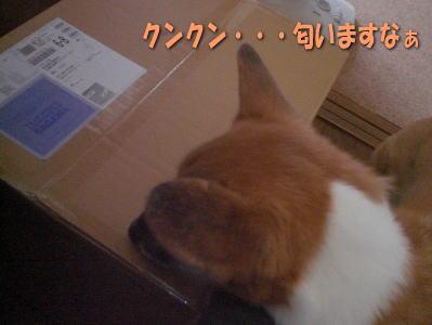 200912070001.jpg