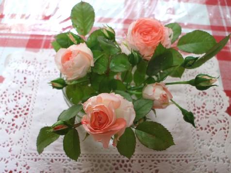 2007_05130032.jpg