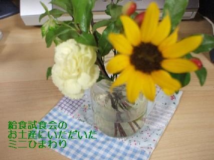 2008_06100029.jpg