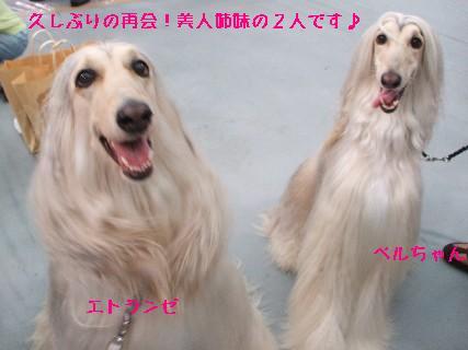 2008_09210092.jpg