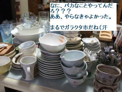 2008_09270042.jpg