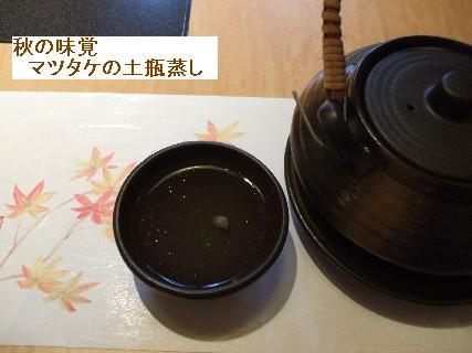 2008_09300033.jpg