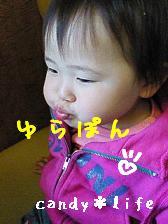 20061122070132.jpg