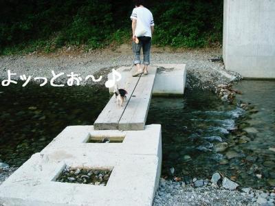 2008050404.jpg